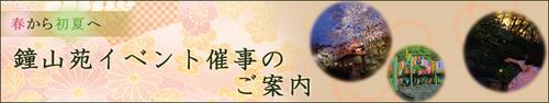 2015年庭園の梅・桜開花情報№8