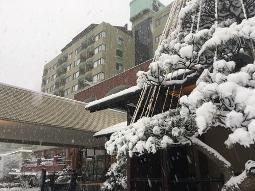 平成29年1月8日降雪情報