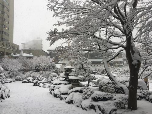 富士山温泉ホテル鐘山苑