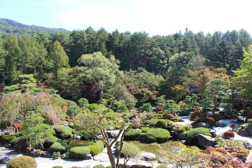 庭園の紅葉情報No.2 富士山温泉ホテル鐘山苑