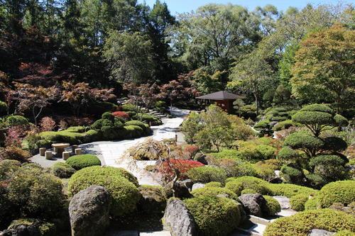 庭園の紅葉情報No.1 富士山温泉ホテル鐘山苑