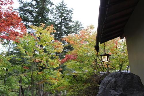庭園の紅葉情報No.4 富士山温泉ホテル鐘山苑