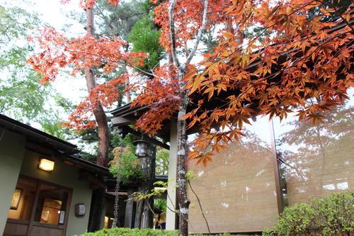 庭園の紅葉情報No.5 富士山温泉ホテル鐘山苑