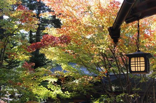 庭園の紅葉情報No.6 富士山温泉ホテル鐘山苑