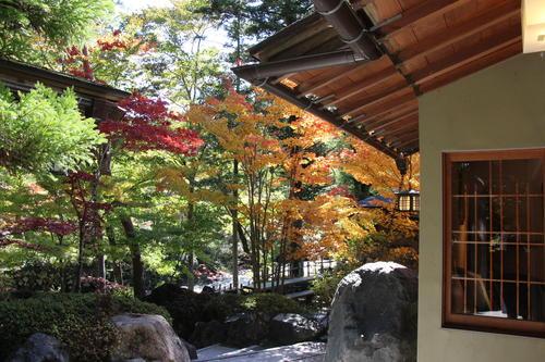 庭園の紅葉情報No.7 富士山温泉ホテル鐘山苑