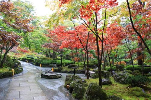 庭園の紅葉情報No.8 富士山温泉ホテル鐘山苑
