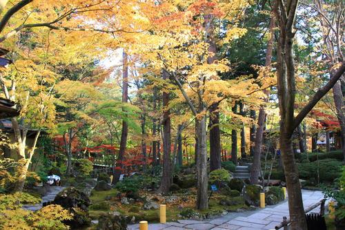 庭園の紅葉情報No.15 富士山温泉ホテル鐘山苑