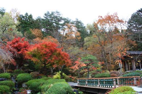 庭園の紅葉情報No.26 富士山温泉ホテル鐘山苑