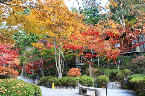 庭園の紅葉情報No.16 富士山温泉ホテル鐘山苑