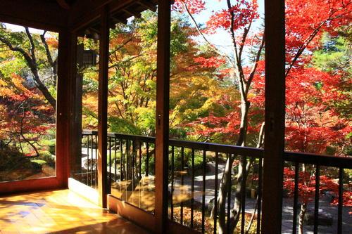 庭園の紅葉情報No.17 富士山温泉ホテル鐘山苑