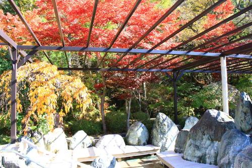 庭園の紅葉情報No.19 富士山温泉ホテル鐘山苑
