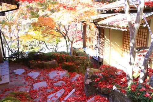庭園の紅葉情報No.21 富士山温泉ホテル鐘山苑