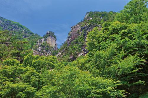 【4月開催】春の「昇仙峡」散策と山梨名物・信玄餅「桔梗屋」工場見学ミニバスツアー