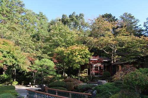 2018年庭園の紅葉情報No.3|富士山温泉ホテル鐘山苑