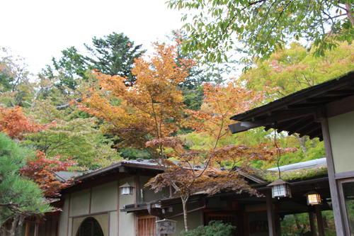 2018年庭園の紅葉情報No.4|富士山温泉ホテル鐘山苑