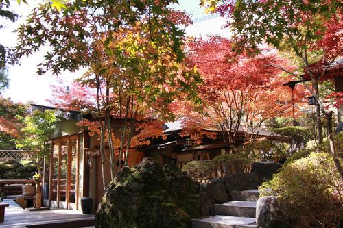 2018年庭園の紅葉情報No.11|富士山温泉ホテル鐘山苑