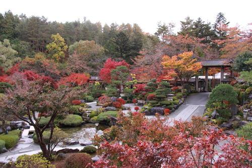 2018年庭園の紅葉情報No.18 富士山温泉ホテル鐘山苑