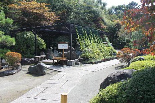 2019年庭園の紅葉情報No.2|富士山温泉ホテル鐘山苑