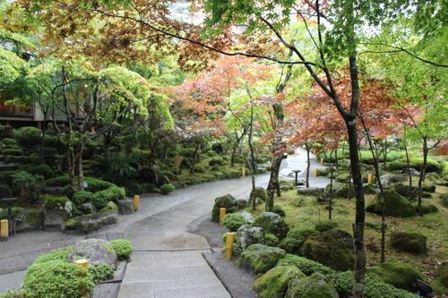 2019年庭園の紅葉情報No.4|富士山温泉ホテル鐘山苑