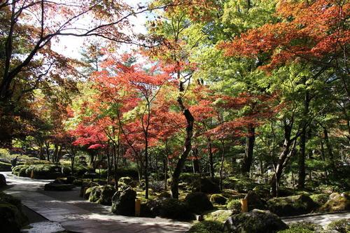 2019年庭園の紅葉情報No.9|富士山温泉ホテル鐘山苑