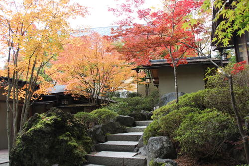 2019年庭園の紅葉情報No.11|富士山温泉ホテル鐘山苑