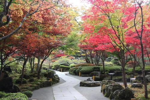 2019年庭園の紅葉情報No.12|富士山温泉ホテル鐘山苑