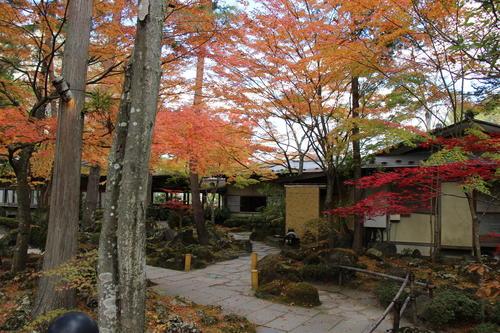 2019年庭園の紅葉情報No.16|富士山温泉ホテル鐘山苑