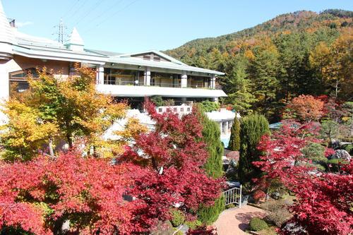 2019年庭園の紅葉情報No.22|富士山温泉ホテル鐘山苑