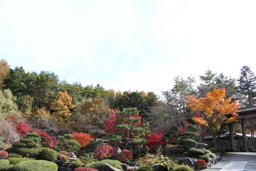 2019年庭園の紅葉情報 最終|富士山温泉ホテル鐘山苑