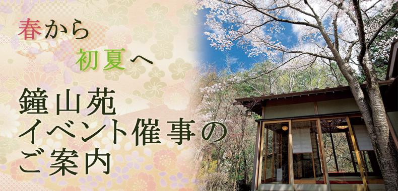 2016年庭園の梅・桜開花情報№8